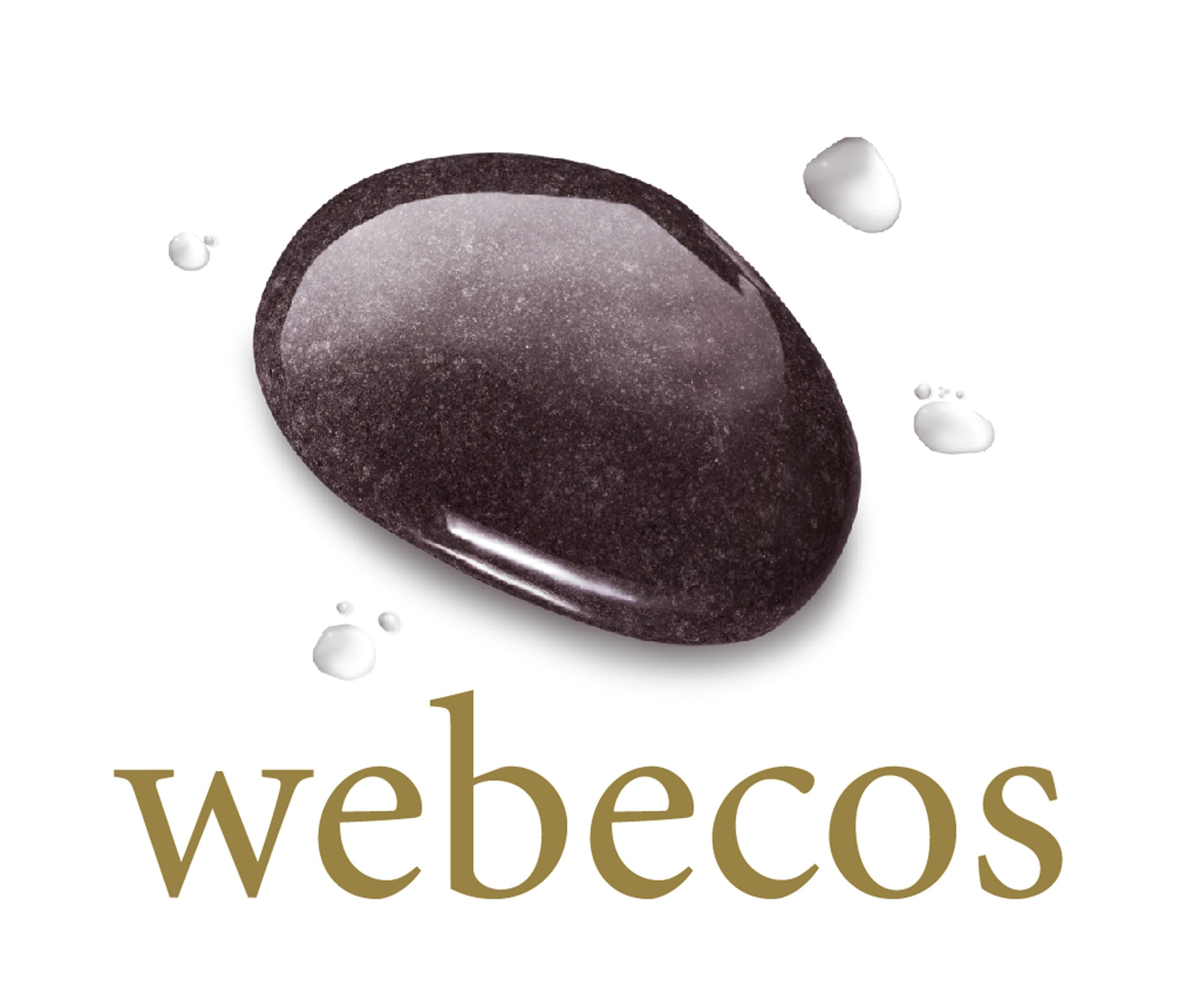 Afbeeldingsresultaten voor webecos logo